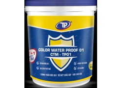 Chống thấm màu Color Water Proof 20kg